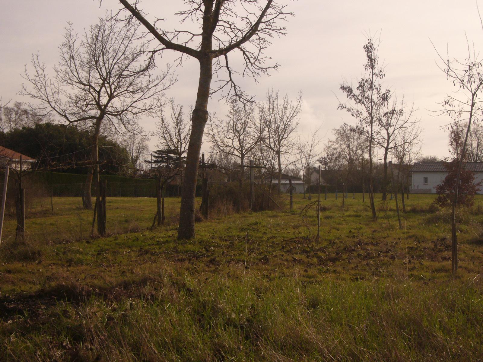 Terrain en vente damazan au prix de 72 000 for Terrain prix